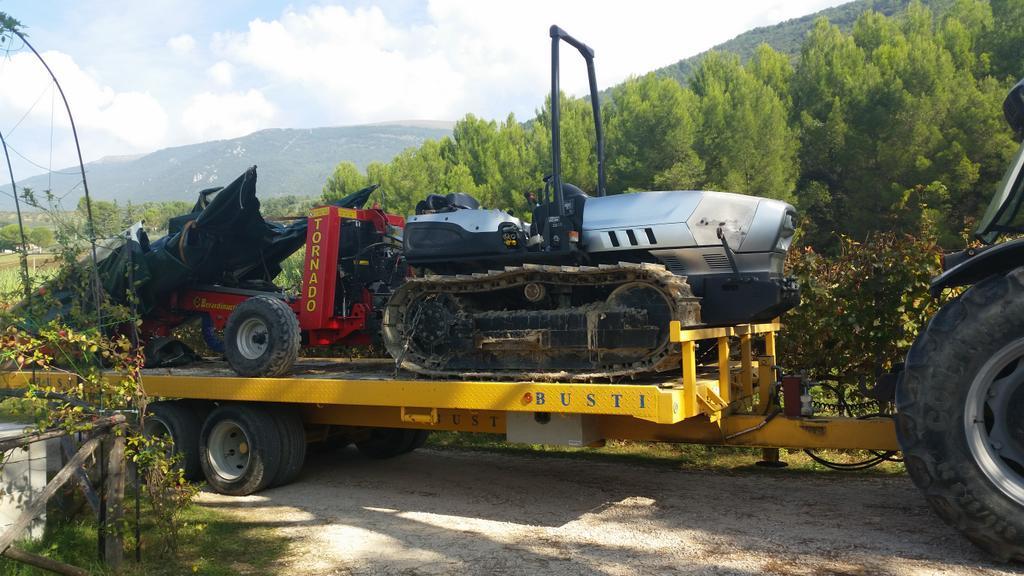 seconda-macchina-olive